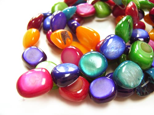 Shell Polished Chip Beads 13x10mm Multi Colour Mix b