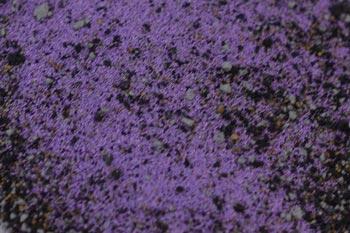 ICED Enamels® – Amethyst Relique Powder 15ml 01