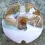 Rose Gold Goldstone Shimmer Swirl 18mm Lentil Handmade Artisan Glass Lampwork Beads - By the Bead, (Made to Order)