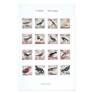 ITS Collage Sheet - Pre-Printed Images for Transfer - 24x24mm Birds