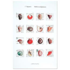 ITS Collage Sheet - Pre-Printed Images for Transfer - 25x25mm Seashells