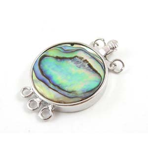 Abalone Paua Shell Tortoise Clasp (20x30x5mm) - 3 strand
