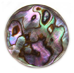 Abalone Shell - 30mm Focal Coin Pendant Bead x1
